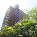 綺麗なマンションです(/・ω・)/緑豊かで、利便性も抜群!