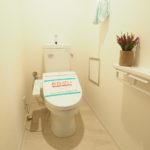 落ち着いた雰囲気のトイレです_(:3」∠)_
